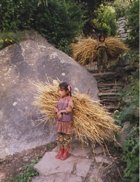Himachal Pradesh NW India